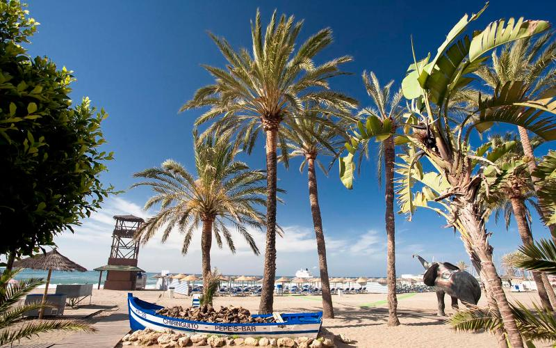 Marbella beachside with very Large Terrace area - Image 1 - Marbella - rentals