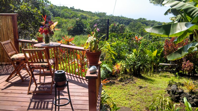 Intimate lanai with full ocean view - Summer Special $95 - Enchanting Tropical Cottage - Kealakekua - rentals