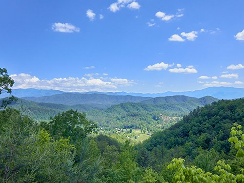 Absolutely Perfect - Image 1 - Sevierville - rentals