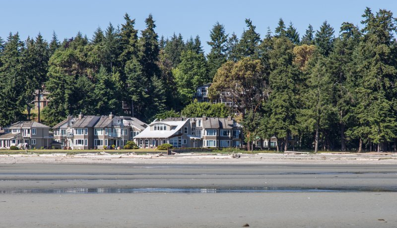 Looking back at Tanglewood from the beach - Beachfront, Sep/Oct and Winter snowbird rates! - Parksville - rentals