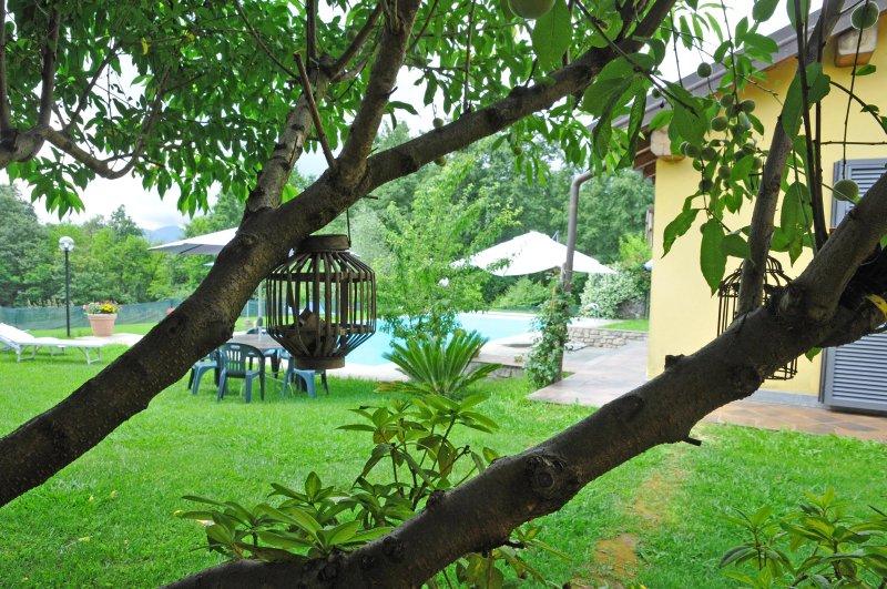 Villa Alba - Park and Pool - Villa Alba - Licciana Nardi - rentals