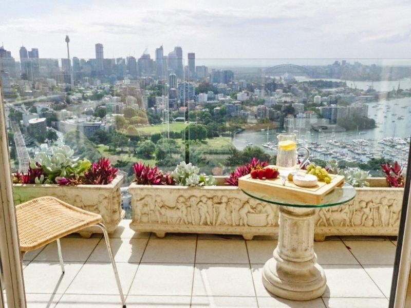 Skyline   Spectacular - Image 1 - Edgecliff - rentals