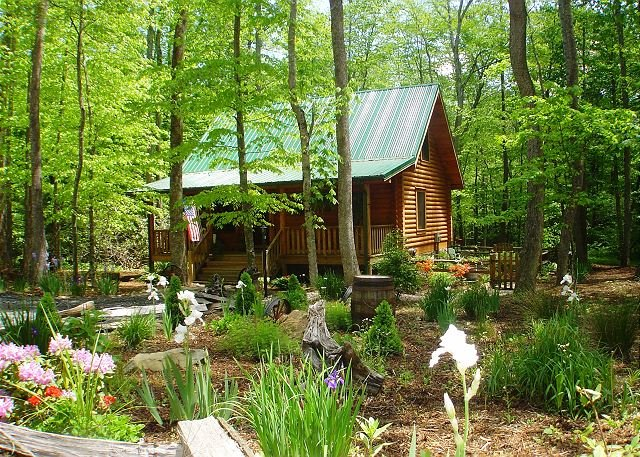 Creekside Cabin w/Hot Tub, WiFi, Fire Pit! Lower Summer Rates Available! - Image 1 - Todd - rentals