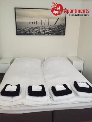 Lux Apartment With Rental Car Included In Reykjavik Cente - 7253 - Image 1 - Reykjavik - rentals