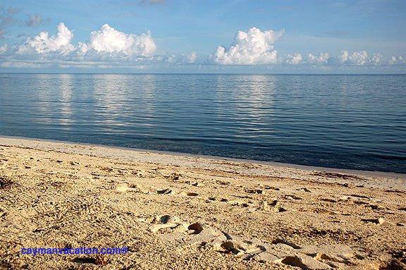 Cayman Stead 2BR Beachfront - Image 1 - Grand Cayman - rentals
