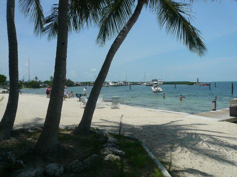 Executive Bay Club - Excellent Location! - Image 1 - Islamorada - rentals