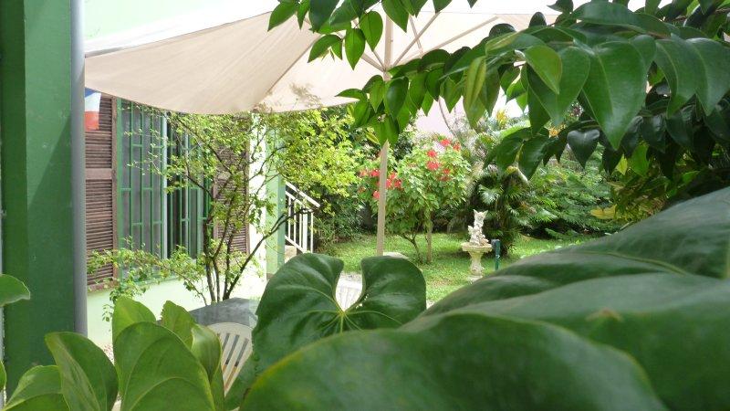 parasol anthurium musaenda Barbados cherry tree fountain & entrance - Lodge TAKINI4 Guest house - Kourou - rentals