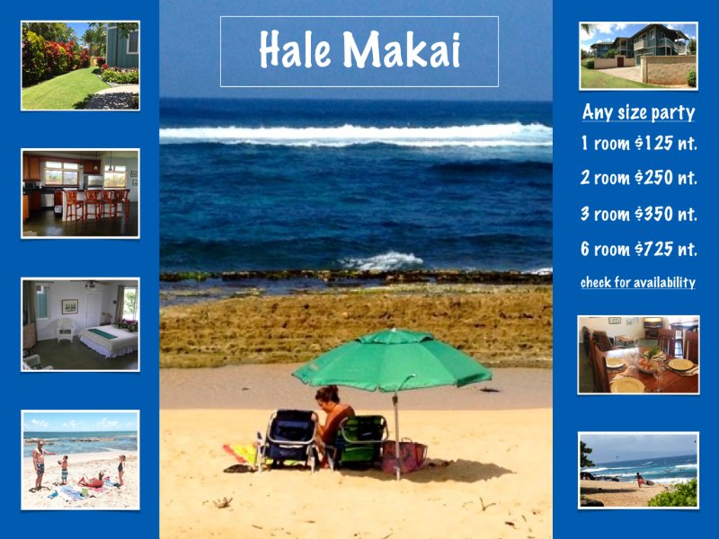 Hale Makai Beach House comfortable, clean, bbq area, outdoor shower and beach access. - Hale Makai - Paia Kuau Maui Vacation Beach Rental - Paia - rentals