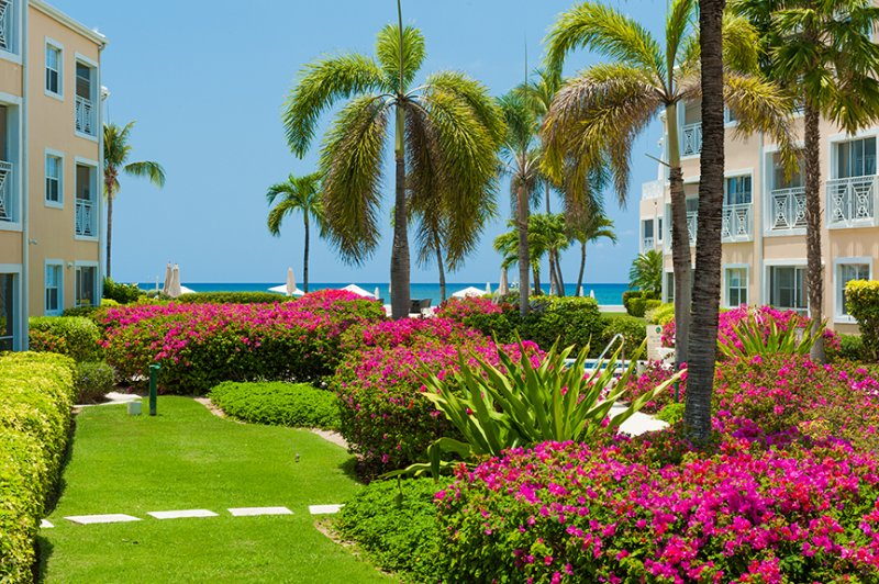 Regal Beach #213 - 2BR OV - Image 1 - Cayman Islands - rentals