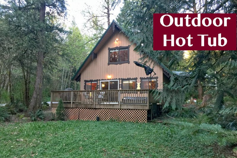 22GS - 22GS Pet Friendly Cabin with a Hot Tub, WiFi and Netflix - Glacier - rentals