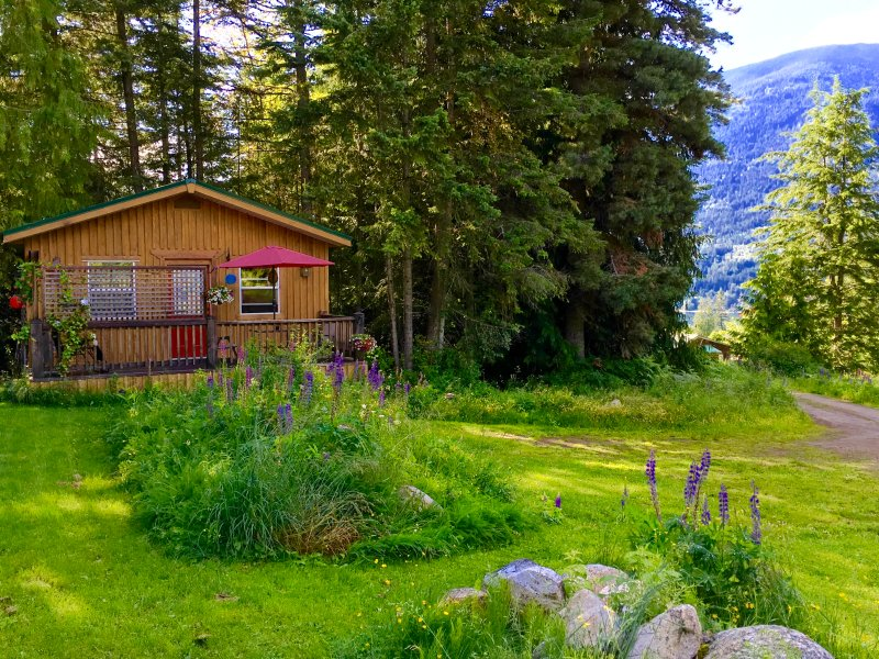 Wild flowers surround the cottage - PET Friendly Mountainview Kootenay Rockies Cottage - Nelson - rentals
