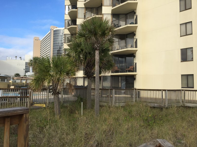 This condo is street level, no steps, and a corner unit located by palm tree and steps from the pool - GROUND floor /next to POOL - Panama City Beach - rentals