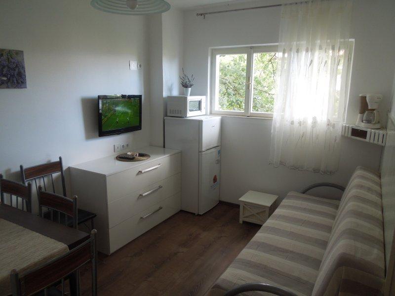 Apartments Meleh A-1 (2+1) - Image 1 - Crikvenica - rentals
