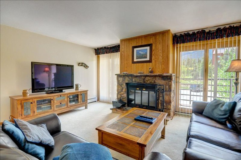BUFFALO VILLAGE 306: 2 Bed/2 Bath, Comfortable & Affordable, Elevator - Image 1 - Silverthorne - rentals