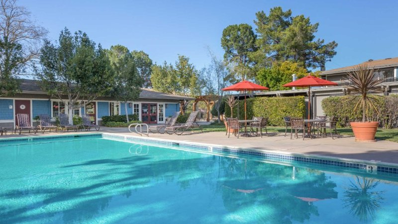 VIBRANT AND AESTHETIC 1 BEDROOM, 1 BATHROOM APARTMENT - Image 1 - Mountain View - rentals
