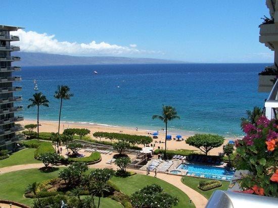 Whaler 923 - 2 Bedroom, 2 Bath Ocean View Condominium*Offering Spring Specials* - Image 1 - Lahaina - rentals