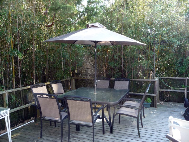 Upper level deck in 'bamboo forest'! - Great OCEAN BEACH House NEAR OCEAN 3 Bath 2 Master - Ocean Beach - rentals