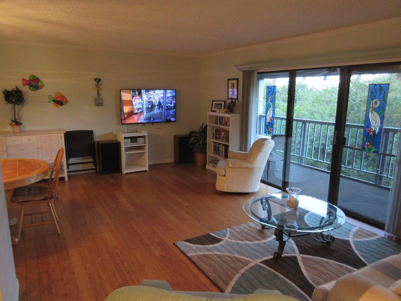 "Living room.  55"" LED Smart TV - APRIL AVAILABILITY - BOOK NOW! - Indian Shores - rentals"