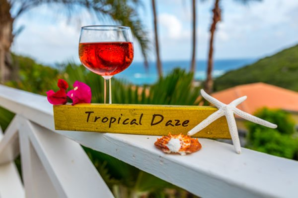 Tropical Daze ~ Come be Dazed & Amazed! - Tropical Daze - Private Pool Villa with Views - Teague Bay - rentals