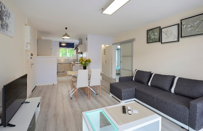Vue d'ensemble - Appartement 63 m² Très Grand Standing en Centre V - Angers - rentals