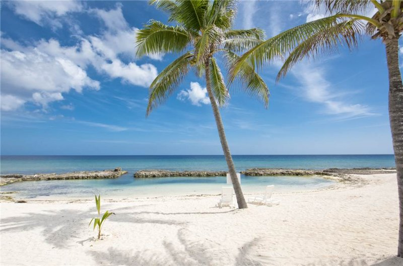 On The Bay #311 - Image 1 - Grand Cayman - rentals