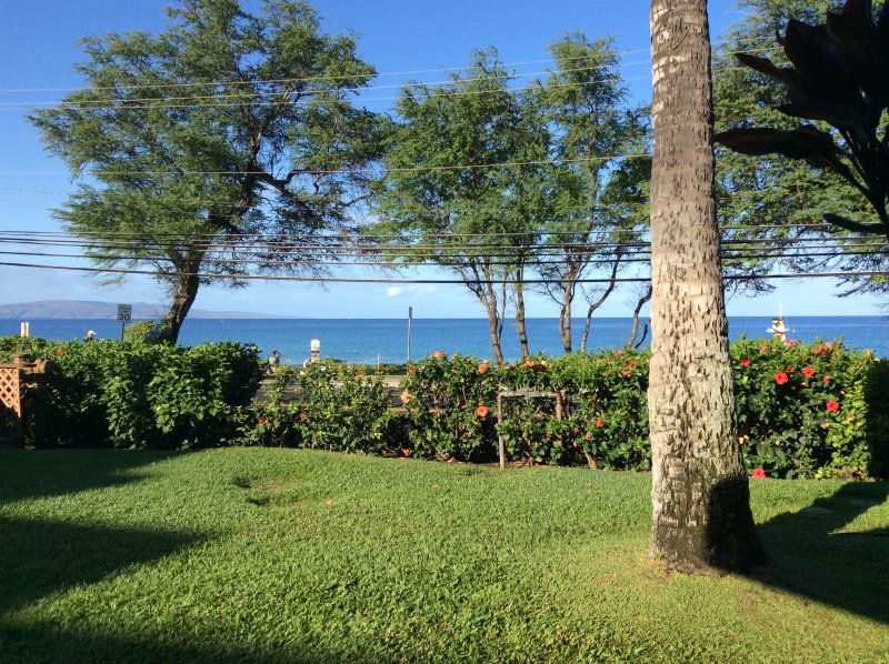 View from the Lanai - BEAUTIFUL OCEANFRONT VIEWS - KAMAOLE BEACH I - Kihei - rentals