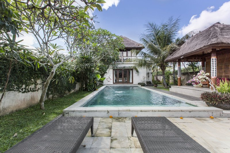 The Pool - natural spring fed water - ironiser filter. SOFT pure water for swimming - Villa Damee 15% off Ubud Bali - Ubud - rentals