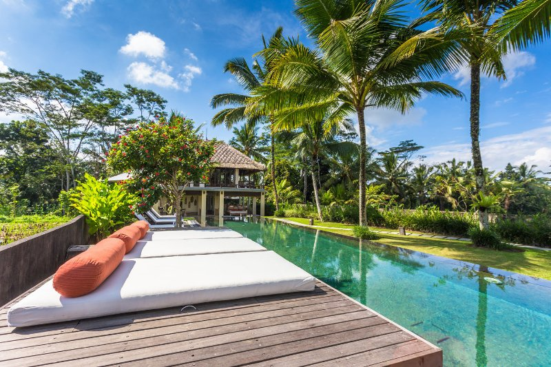 The Pool - Amala Villa Ubud - Ubud - rentals