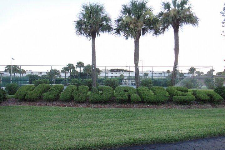 wr-a205-bushes - 3160 N. Atlantic Ave Unit A-205 - Cocoa Beach - rentals