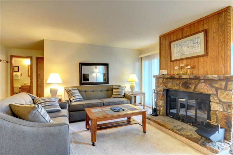 BUFFALO VILLAGE 101: 2 Bed/2 Bath, Sleeps 7, Elevator, Wi-Fi, All of Mother Nature Only Steps Away - Image 1 - Silverthorne - rentals