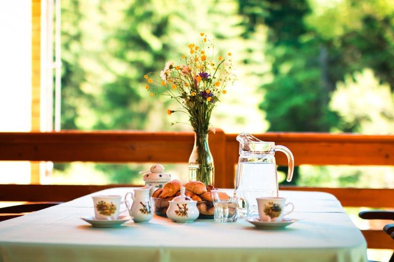 Beautiful Chalet Bear WILI HUNTER - Image 1 - Donovaly - rentals