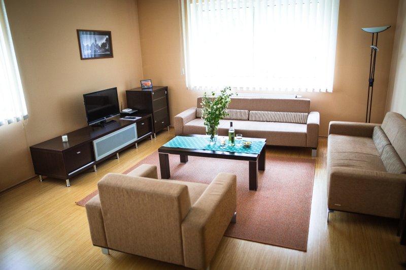comfy living room - Peak View Apartment WILI TATRY - Strelniky - rentals