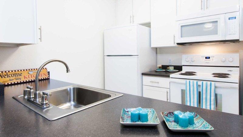 CHARMING AND SPACIOUS STUDIO APARTMENT - Image 1 - Emeryville - rentals