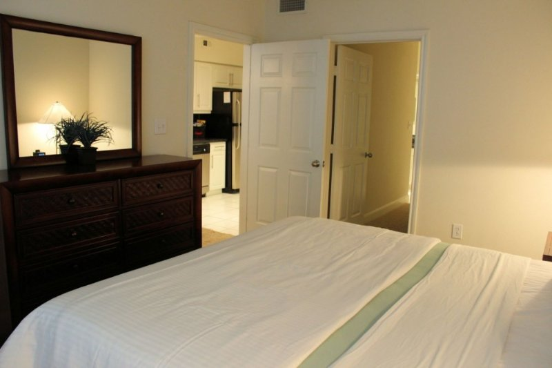 Furnished 1-Bedroom Apartment at Buffalo Speedway & W Alabama St Houston - Image 1 - Houston - rentals