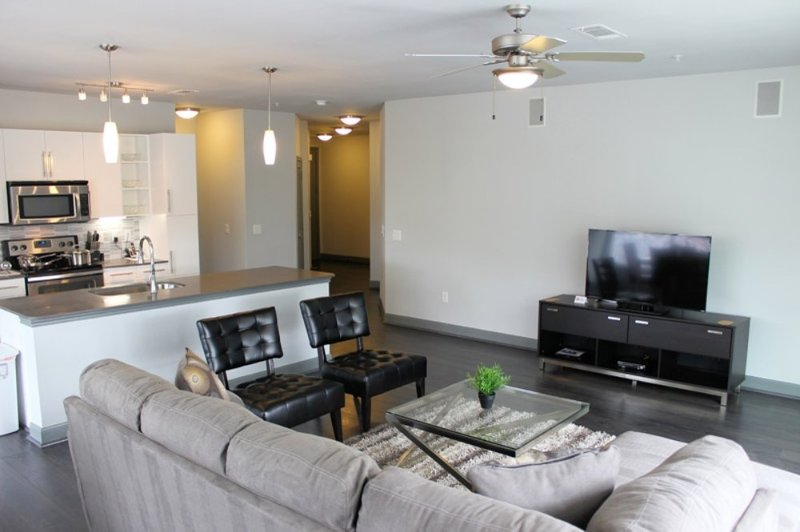 Furnished 1-Bedroom Apartment at Richmond Ave & Cummins St Houston - Image 1 - Houston - rentals