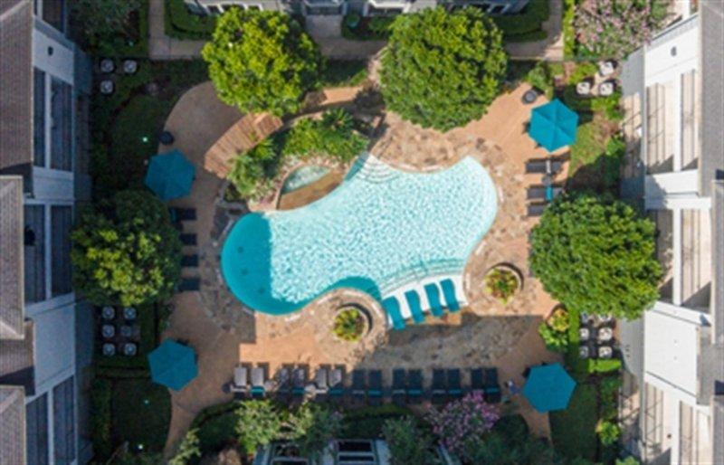 Furnished 1-Bedroom Apartment at Louisiana St & Hadley St Houston - Image 1 - Houston - rentals