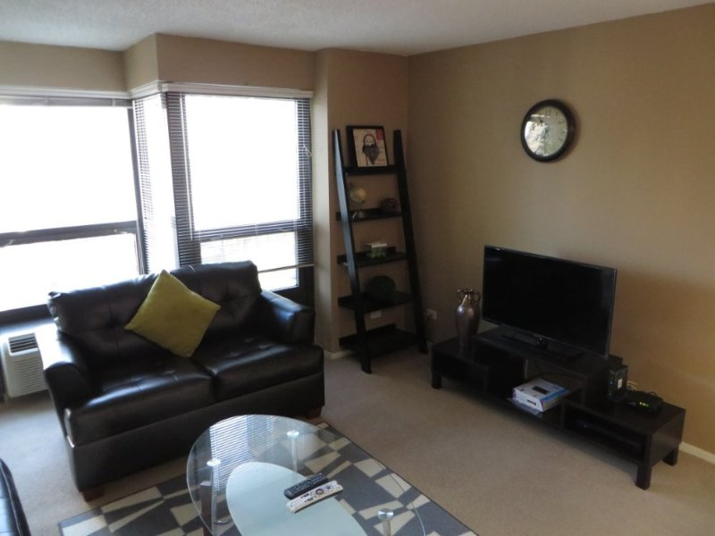 BEAUTIFUL AND CLEAN 1 BEDROOM 1 BATHROOM CONDOMINIUM - Image 1 - Chicago - rentals