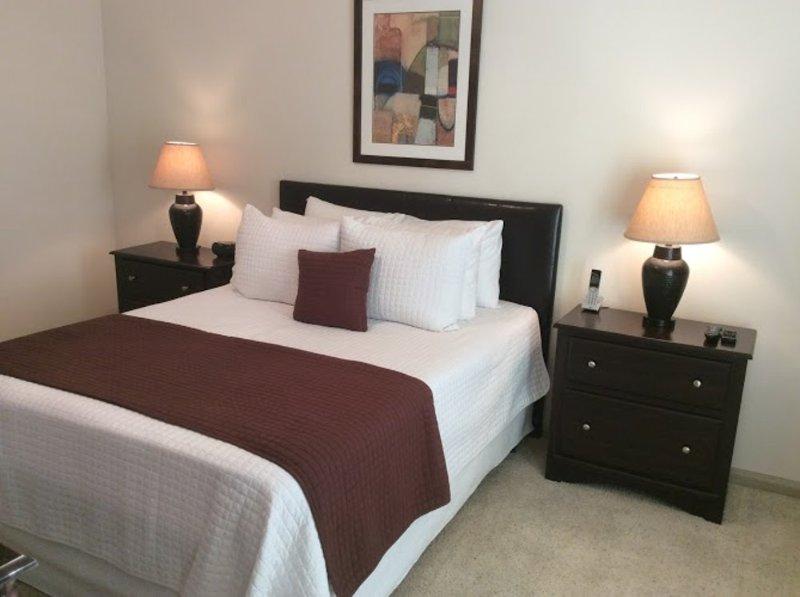 Furnished 1-Bedroom Apartment at E Medical Center Blvd & Sarah Deel Dr Webster - Image 1 - Webster - rentals