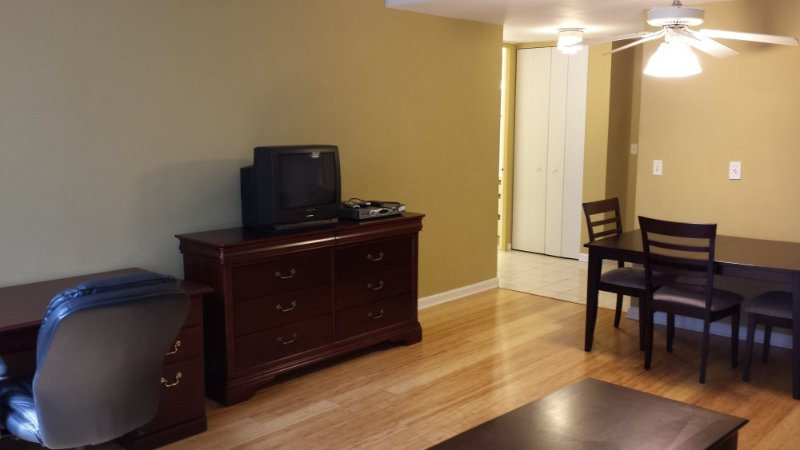 Furnished 1-Bedroom Apartment at N Fairbanks Ct & E Erie St Chicago - Image 1 - Chicago - rentals