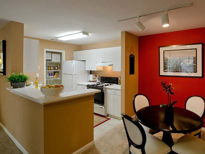 Furnished 1-Bedroom Apartment at Athletic Way & Winners Dr Gaithersburg - Image 1 - Gaithersburg - rentals