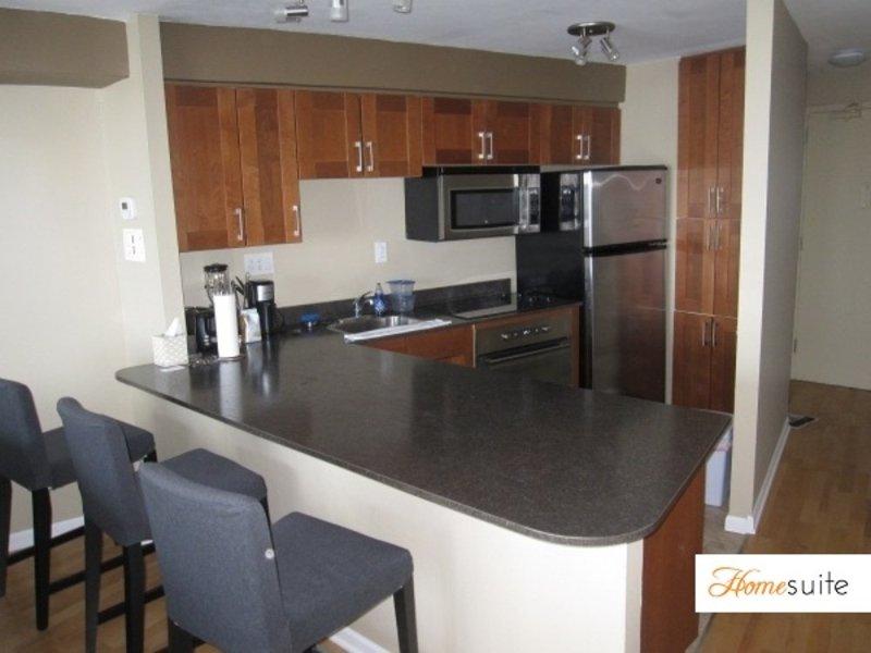 Amazing 1 Bedroom Top Floor Apartment - Image 1 - Chicago - rentals