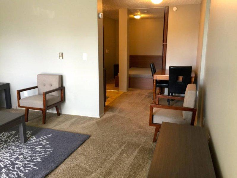 Spacious Furnished Studio Apartment - Image 1 - Renton - rentals
