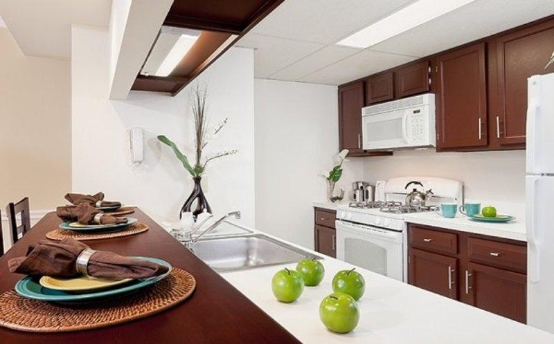 Furnished 2-Bedroom Apartment at N Wayne St & 13th St N Arlington - Image 1 - Arlington - rentals