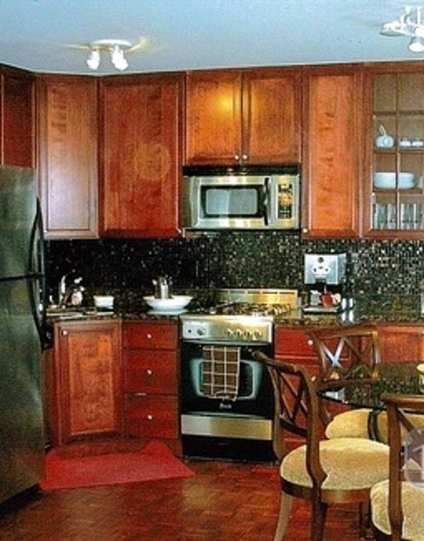 Furnished 1-Bedroom Condo at N Astor St & E Schiller St Chicago - Image 1 - Chicago - rentals