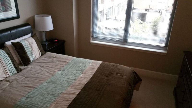 Furnished 1-Bedroom Apartment at 12025 Town Square St Reston - Image 1 - Reston - rentals
