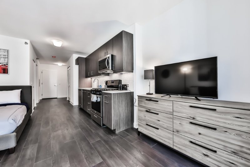 Furnished Studio Apartment at W Randolph St & N State St Chicago - Image 1 - Chicago - rentals
