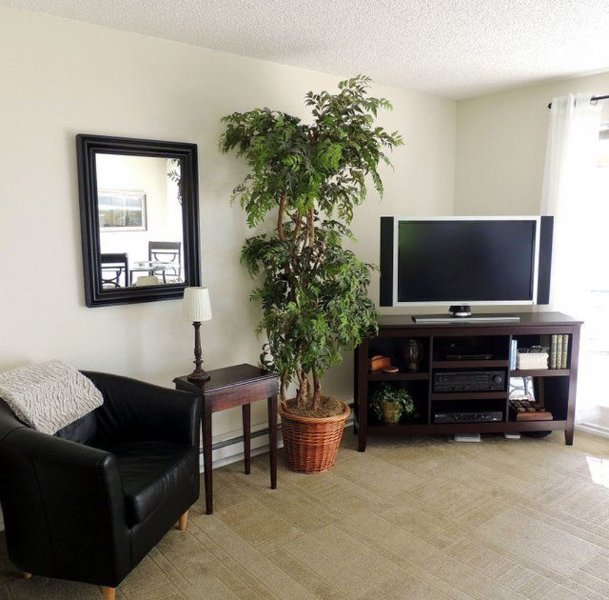Furnished 1-Bedroom Condo at Hallstrom Dr NW & 126th St Ct NW Gig Harbor - Image 1 - Gig Harbor - rentals