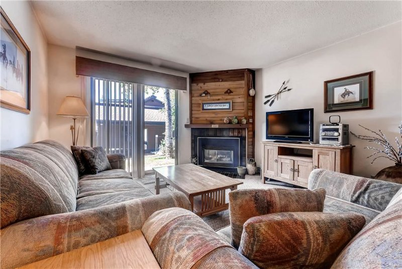 Timber Run 309A - Image 1 - Steamboat Springs - rentals