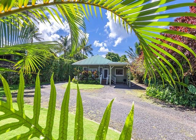 Sweetheart of Hanalei, fantastic location right on Weke! 15% May Special - Image 1 - Hanalei - rentals
