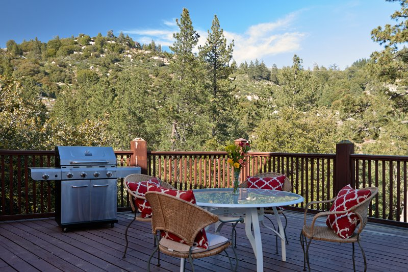 """Deluxe Forest Getaway, """"Robin's Nest"""" Views - Image 1 - Idyllwild - rentals"""